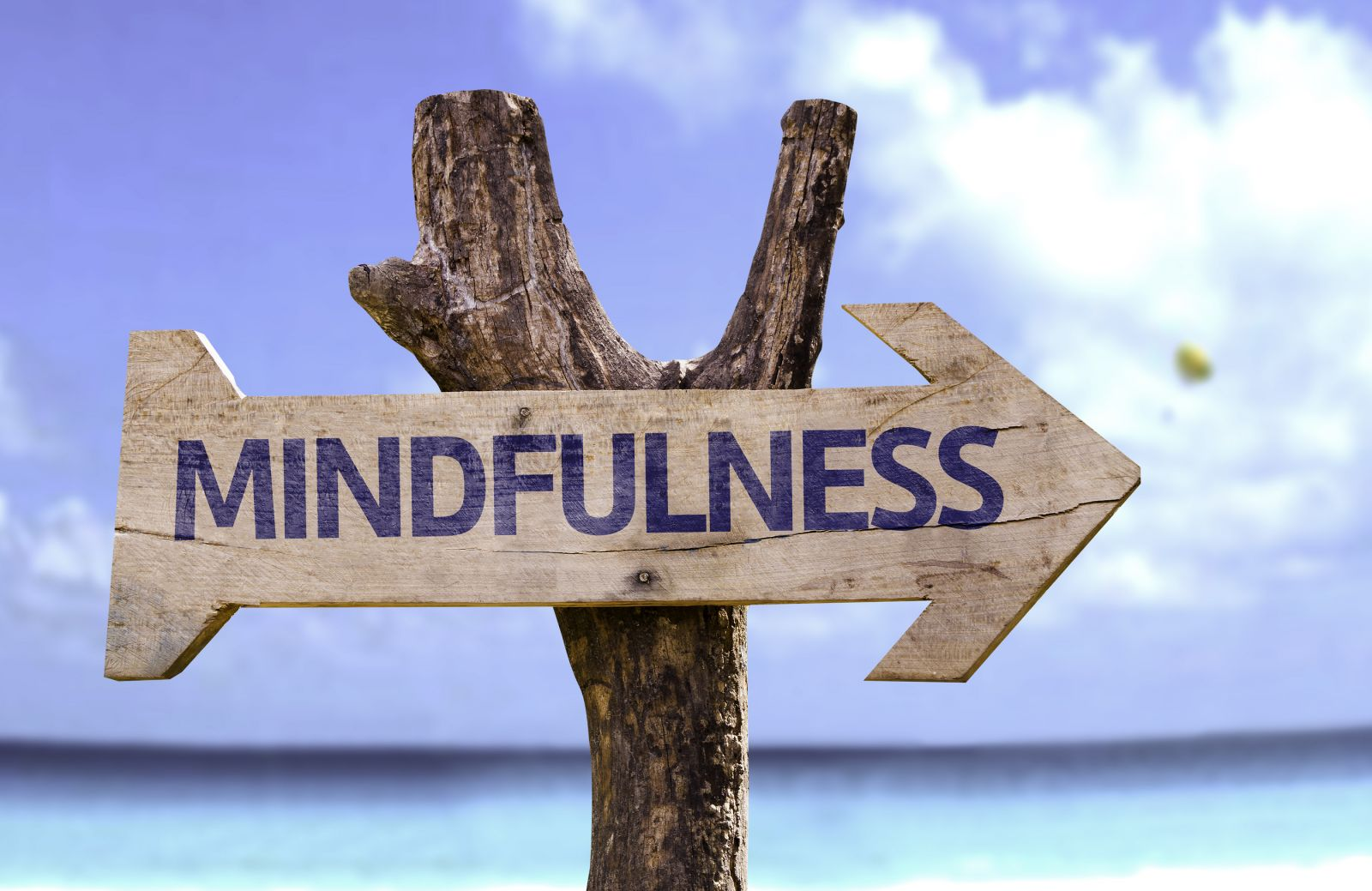 What are the principles of mindfulness meditation? 3