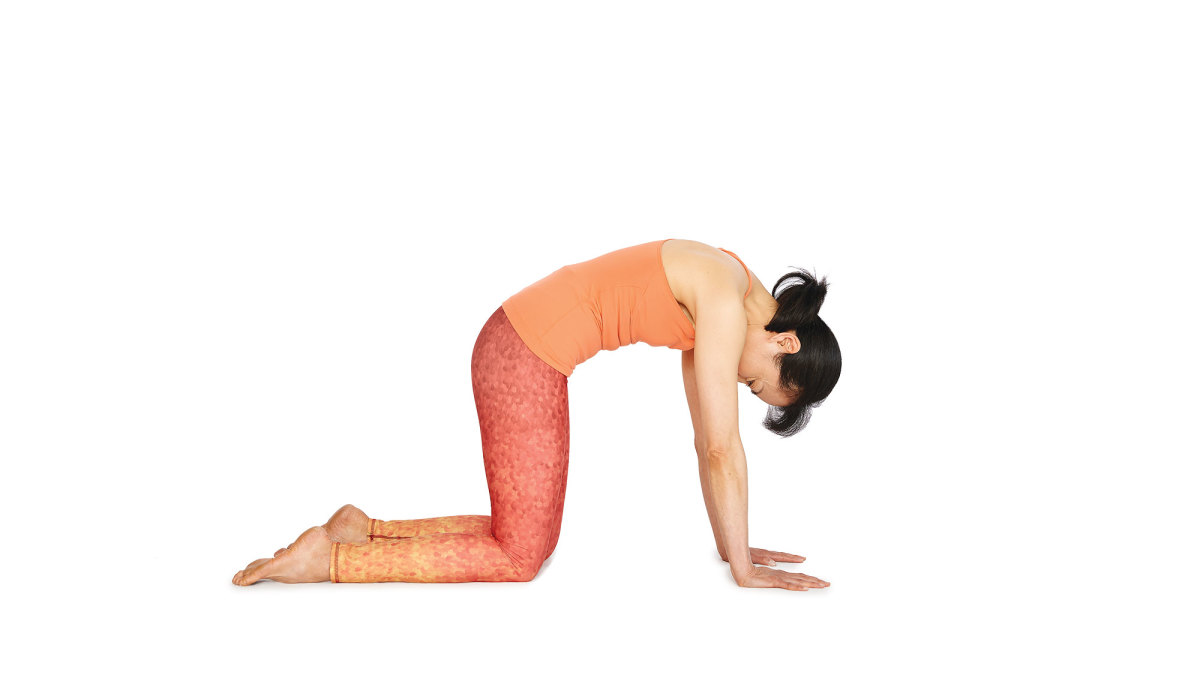 Has anyone tried face yoga (or some exercise for the face)? Does it really help in lifting the face? 3