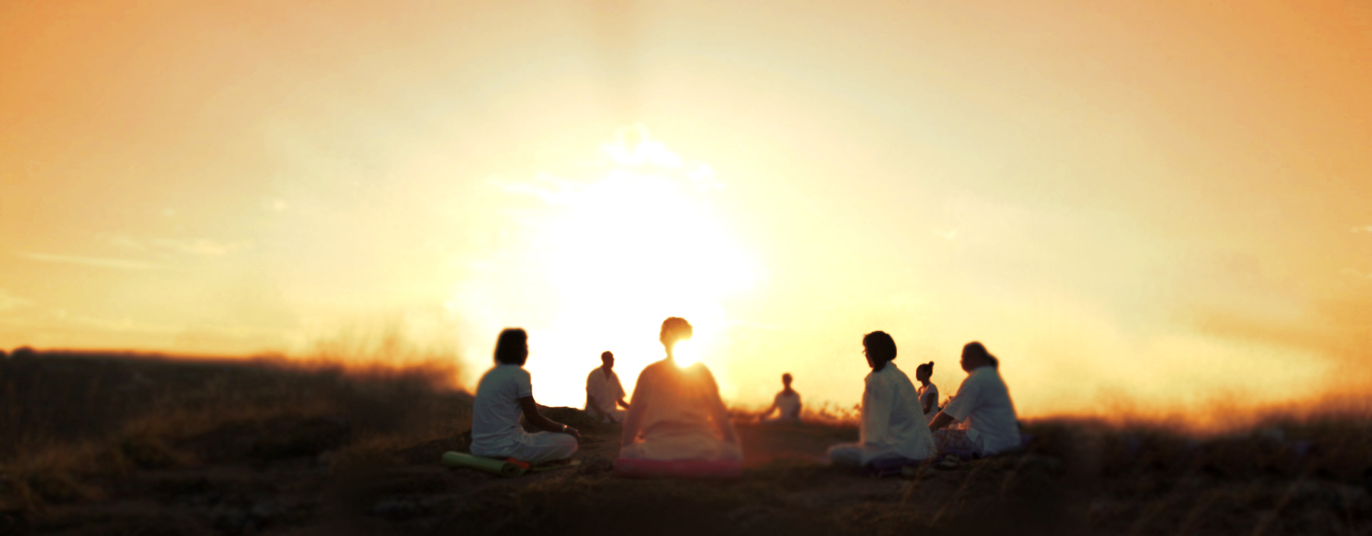 What does meditation do to your brain/mind? 2