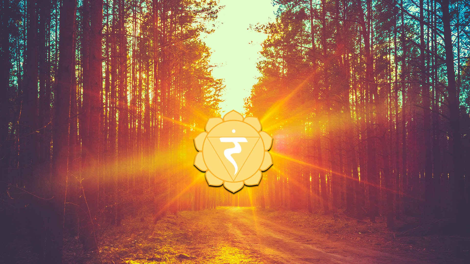 What is the purpose of meditation: Mindfulness or Enlightenment? 7