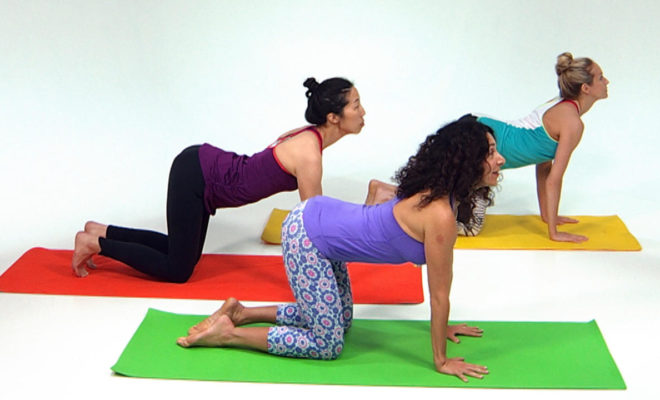 What are the basic steps to do yoga for a beginner? 4